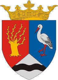 Füzesgyarmat Város Önkormányzat