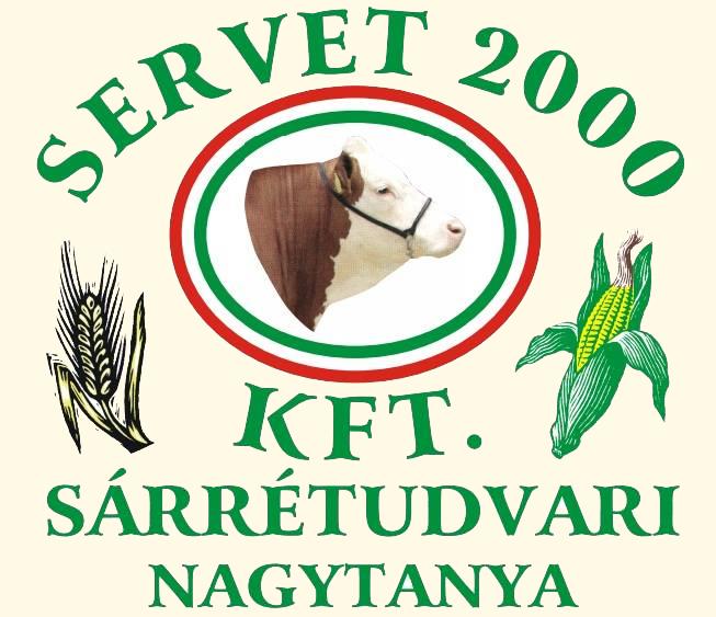 Servet 2000 Kft.
