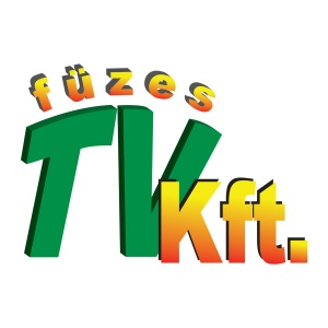 Füzes TV